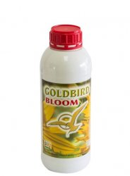 GOLDBIRD BLOOM