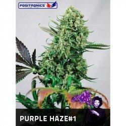 PURPLE HAZE # 1